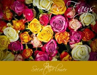 SECRET FLOWER AGENCY